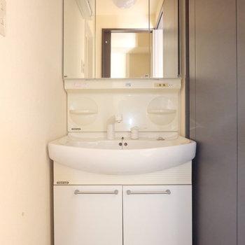 脱衣所には大きな洗面台。鏡の後ろも収納になっています(※写真は9階の同間取り別部屋のものです)