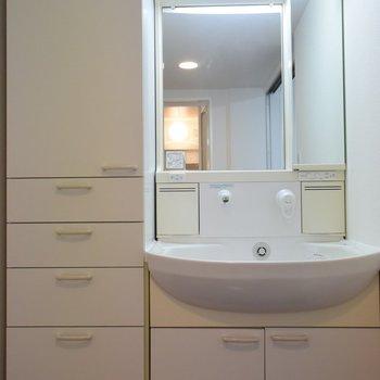 洗面所には収納が多くてうれしい※写真は3階同間取り・別部屋のものです。