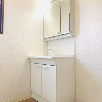 入って一番奥は洗面所。(※写真は3階の同間取り別部屋のものです)