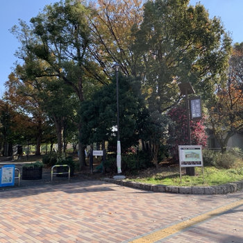 隣には大きな公園もありますよ。