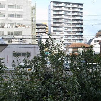 2階なので通りが近いんですが、ちょうど街路樹が目隠しのようになってくれてます。