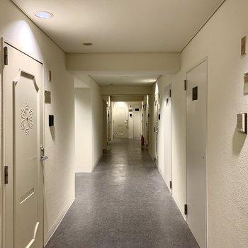 共用部は内廊下。雨の日に濡れることもありません。