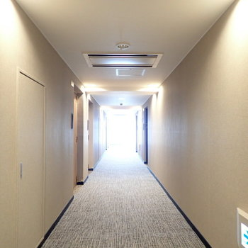 共用部】完全屋内の廊下です!