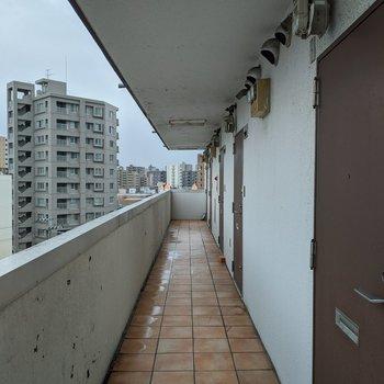 共用部分は屋外にあります。雨や雪対策が必要です。
