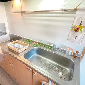 コンロは持ち込み式ですが、広めのシンクと水切りラックで洗い物が捗りそう◎