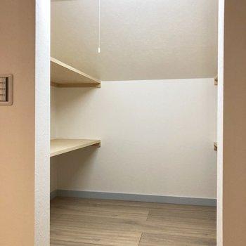 【ロフト】こちらにも収納。※写真は3階の同間取り別部屋のものです