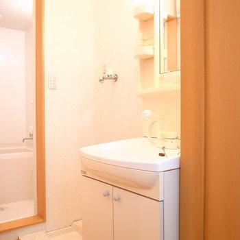 お風呂を出て左手に洗濯パンと洗面台があります。