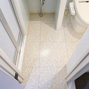 脱ぐときだけマットを敷けば、トイレを気にすることなく脱衣スペースにできますよ。