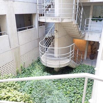 共用部】階段と緑。美術館みたいな眺めです。
