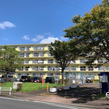 小倉南区の小高い丘に立つ団地。雰囲気の良い建物