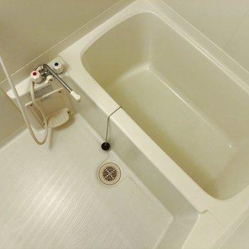 お風呂はスタンダードなものですよ。