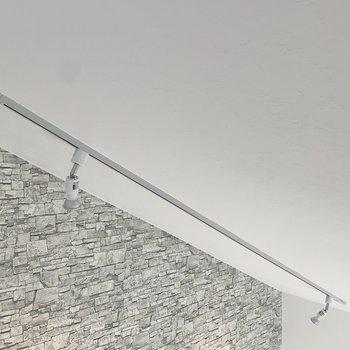 居室の照明もスポットライト。