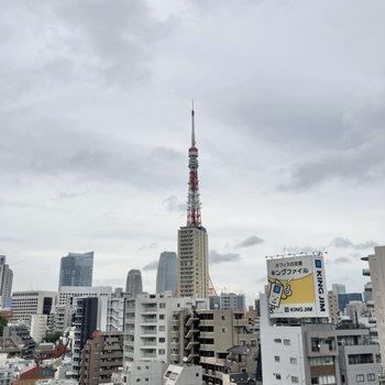 【洋室側】あ!東京タワー発見…!