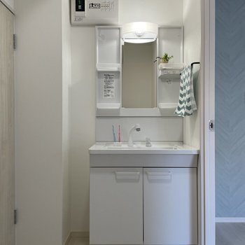 独立洗面台と洗濯機置き場がこちらにあります。
