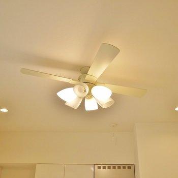 天井が高いのでグルングルンしましょ!※写真は2階反転間取りのもの