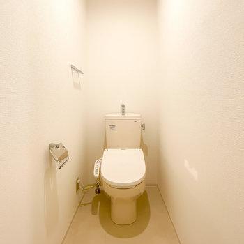 長細い空間の奥にあるトイレは嬉しいウォシュレット付き。収納を置くスペースも十分あります。