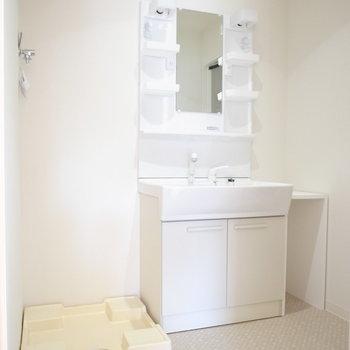 浴室を出て右手に、洗面台と洗濯パンが並んでいます。