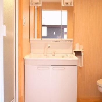 浴室を出てところに洗面台。