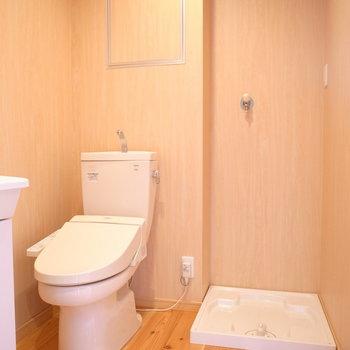 向かいに洗濯パンとトイレがあります。