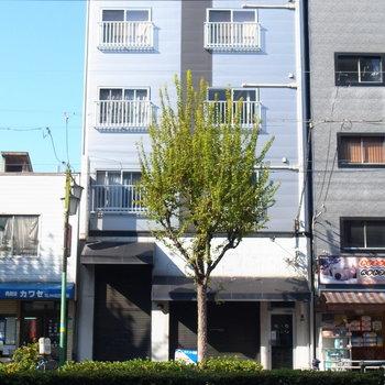 大通りに面した渋いマンション。かなりのギャップがあります!