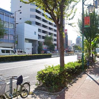 【周辺環境】平日の午前中ですが、交通量は少なめ。のんびりしていました。