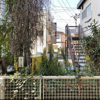 【1階】目の前には緑と住宅。