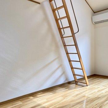 はしごの裏側にベッドが置けそうです。
