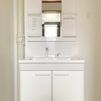 ノズルが伸びるから洗いやすい。(※写真は4階の反転間取り別部屋のものです)
