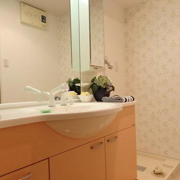 独立洗面台がとても大きい(※写真は2階の同間取り別部屋、モデルルームのものです)