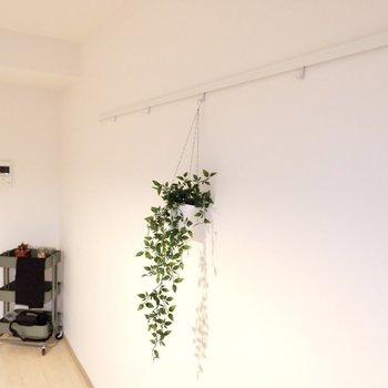ピクチャーレールには、こうして小さなプランターを掛けてみるのもおすすめ。※写真は2階の反転間取り別部屋のものです