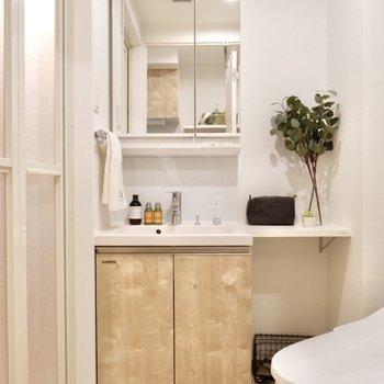 洗面台とトイレは同室にあります。※写真は2階の反転間取り別部屋のものです
