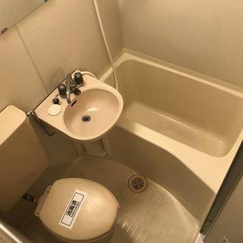 浴室は3点ユニット。シャワーで丸洗いなんてこともできます。