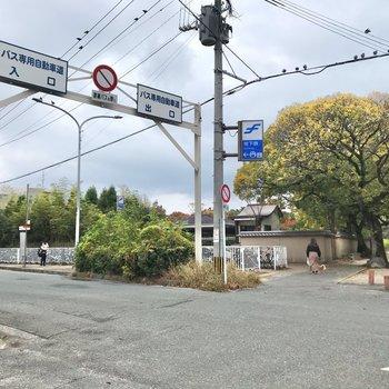 こちらは徒歩12分ほどの箱崎宮前駅。