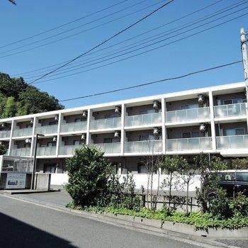 プラージュ横浜日吉