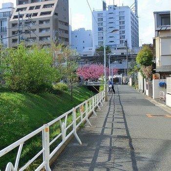川沿いを歩いていける駅までの道のり。
