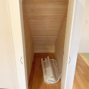 その脇には階段下の収納が!掃除道具などはこちらに。