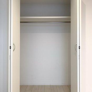 収納は一人暮らしに十分なサイズ。