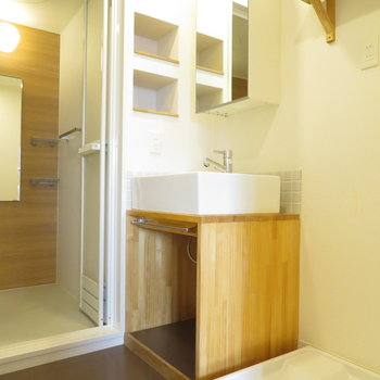 洗面台や洗濯機置き場には棚も付いています