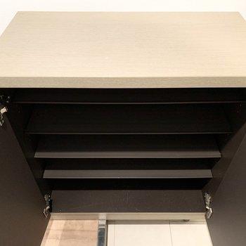 シューズボックスは1段に3足くらいのサイズ感の可動棚のロータイプ。(※写真は1階の同間取り別部屋のものです)