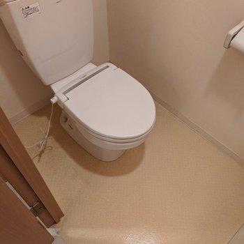 広いスペースのあるトイレです。