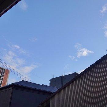 南東方向の空が開けているので、午前中は明るい光が差し込みそうです。
