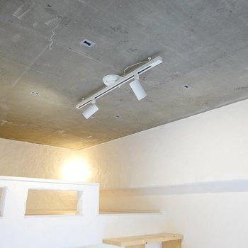 天井は剥き出しのコンクリート。それを囲むようにある白い壁は、なんと全て漆喰塗り!