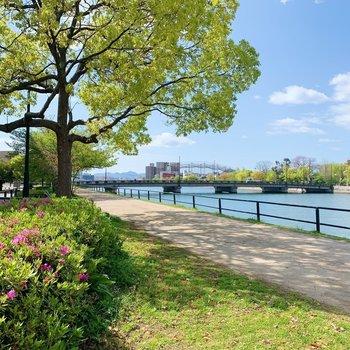 川沿いでもお散歩を楽しもう。