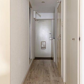 では、廊下へ出てサニタリーへ。