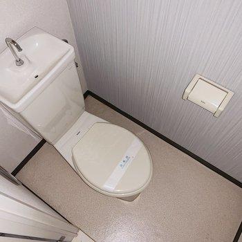 トイレのクロスはほんのり水色◯(※写真はフラッシュを使用しています)