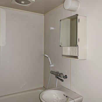 鏡兼、小さな収納に洗顔グッズを。(※写真はフラッシュを使用しています)