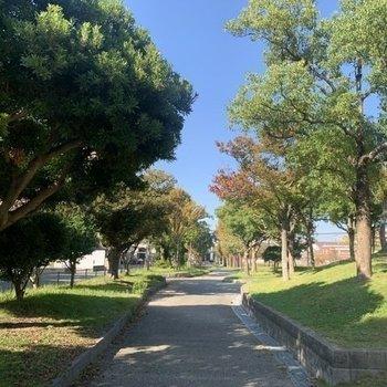 【外観・周辺環境】緑が綺麗で癒やされる環境がおすすめ!