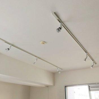 天井にはライティングレール。ドライフラワーを飾るのもいいですね。