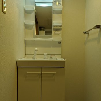独立式洗面台です。隣のスペースにタオル用の棚を置くことができそうですね。
