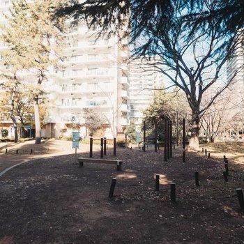 緑や公園が多く、敷地内に保育園もたくさんあります。